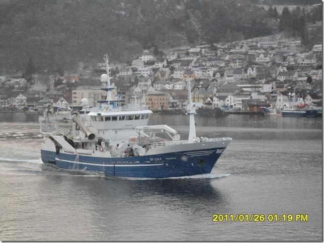 Fiskebas SF-208-F (3)