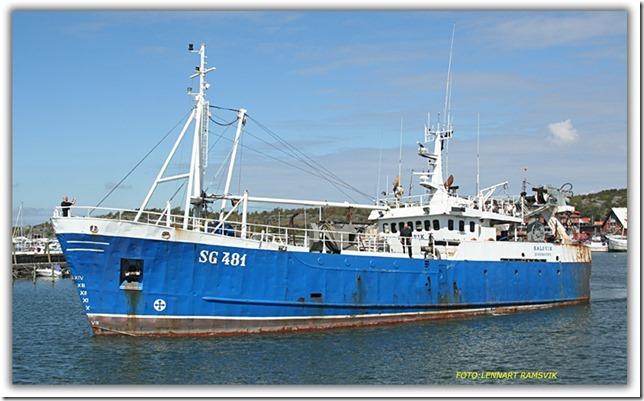 Halsvik SG 481